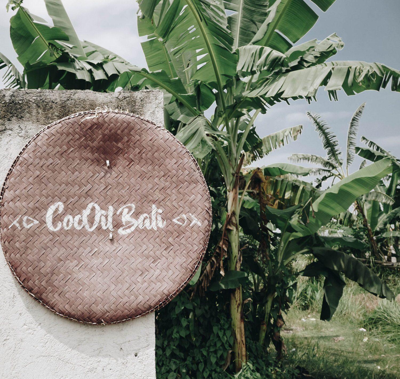 廢物人妻峇里島-製作手工椰子油